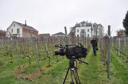 190205_tournageRTBF_vignoble_22