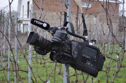 190205_tournageRTBF_vignoble_38