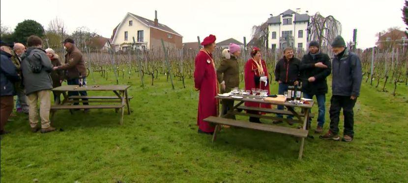 Le vignoble de Genval en majesté sur laUne