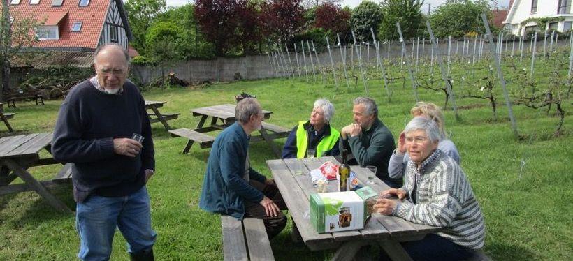 On soigne la vigne… et lehoublon
